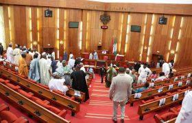 Senators Salary Structure in Nigeria