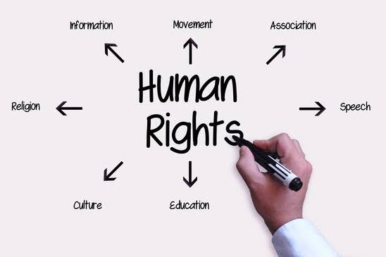 Human Rights Organizations in Nigeria