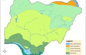 List of All Types of Vegetation in Nigeria