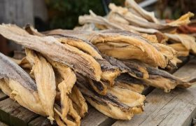 How To Start Stockfish (Okporoko) Business in Nigeria