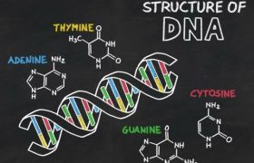 Top 10 Best Universities To Study Biochemistry In Nigeria