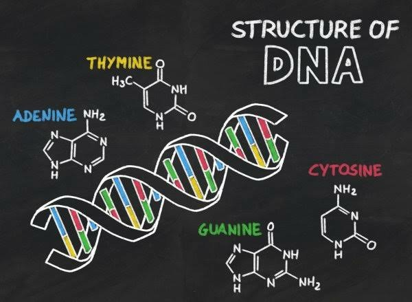 Top 10 Best Universities To Study Biochemistry In Nigeria