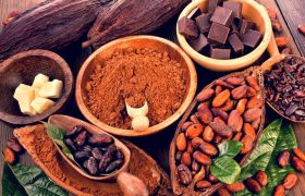 Current Prices Of Cocoa In Nigeria