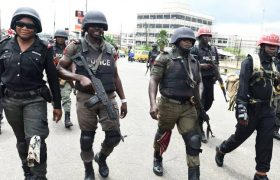 List Of Top Paramilitary Agencies In Nigeria