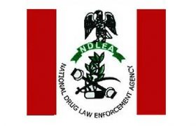 NDLEA Salary Structure In Nigeria Currently