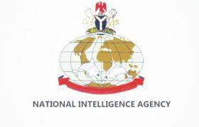 NIA Salary Structure In Nigeria